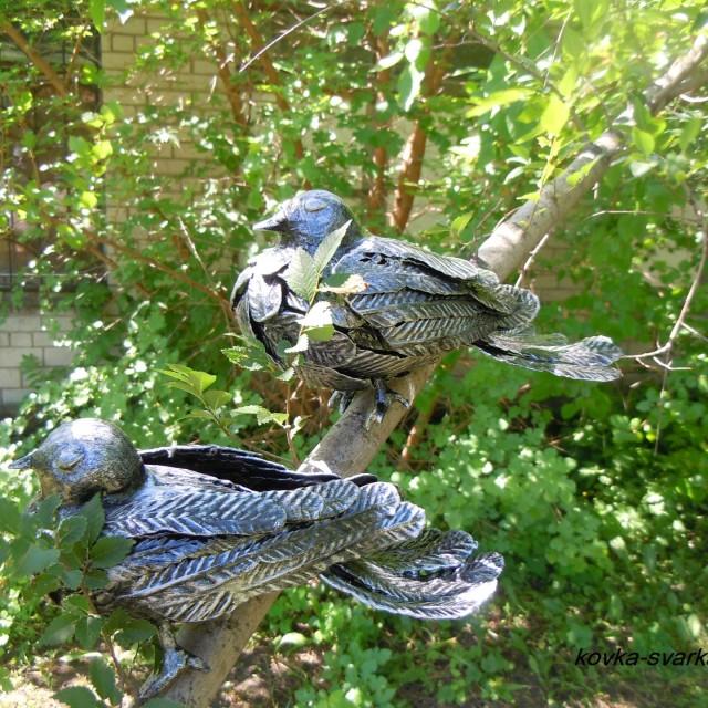 Фото кованых птиц