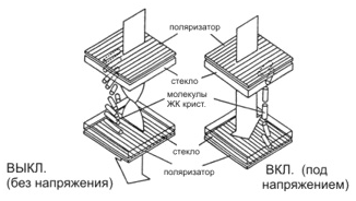 Поляризация ЖКС под действием поля.